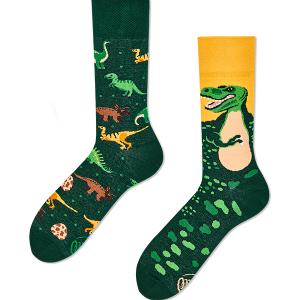 Veselé ponožky Dinosaurus – Many Mornings