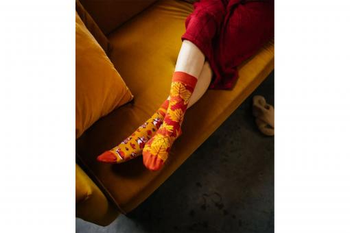 Veselé ponožky Veveričky